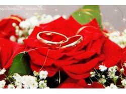 Фото годовщина свадьбы 2