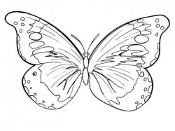 Цветы картинки рисованные для детей 2