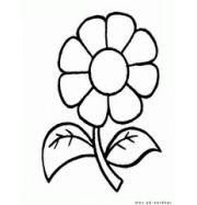 Картинки раскраски цветы ромашки 2