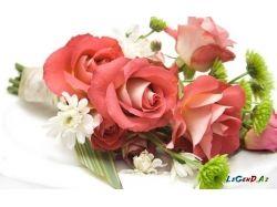 Картинки раскраски цветы ромашки 4