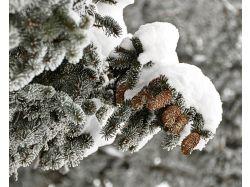 Фото женщины зимой 7