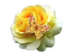 Нарисованный букет цветов 2
