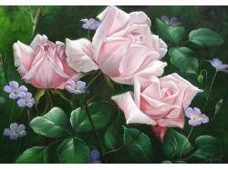 Красивые картинки с цветами 3