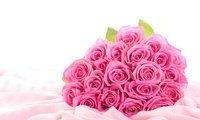 Розовые розы букет 3