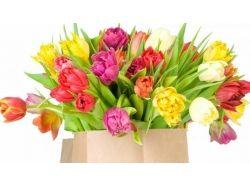 Цветы большой букет фото