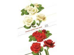 Картинки нарисованные цветы