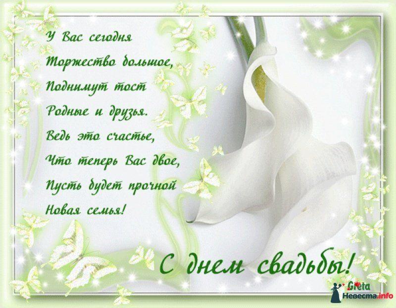 Трогательные поздравления на свадьбу молодоженам в стихах
