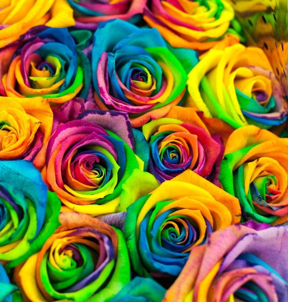 цветы самые яркие картинки мелехина
