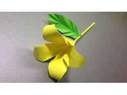 Цветы из бумаги видео