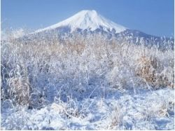 Красивые фото природы зима