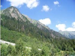 Кавказская природа