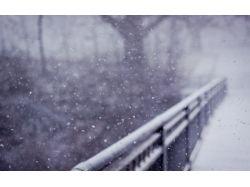 Картинки фото зима природа
