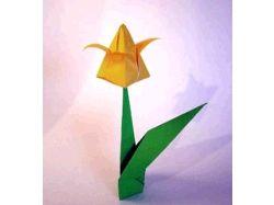 Цветы из бумаги схемы