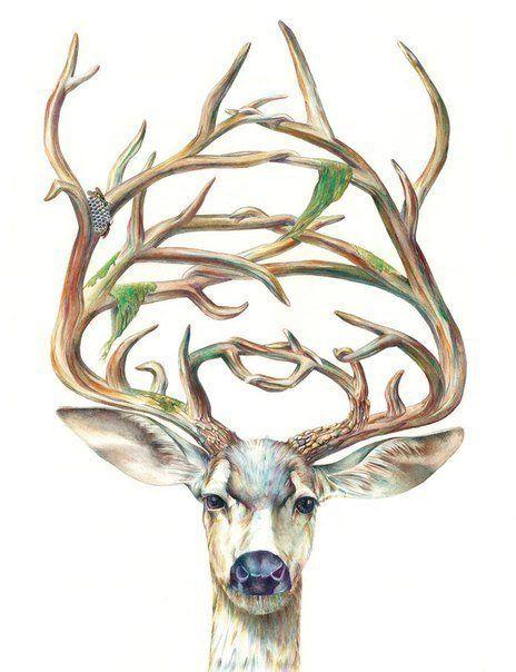 Эскизы татуировки олень Рисунки тату