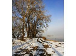 Зимняя природа картинки фото