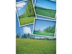 Природа поля