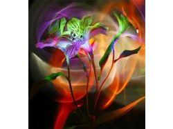 Цветные цветы