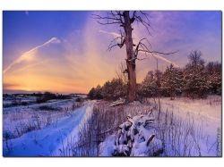 Красивые картинки зимней природы