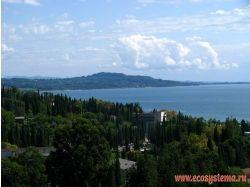 Абхазия фото природы