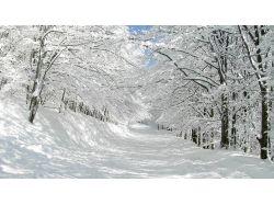 Красивая природа зима