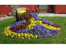 Натюрморт с цветами фото