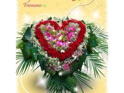 Фото цветов для любимой