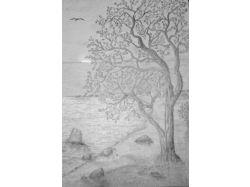 Черно белые цветы картинки карандашом