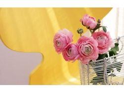 Широкоформатные картинки цветы
