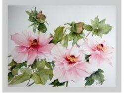 Акварель цветы картинки