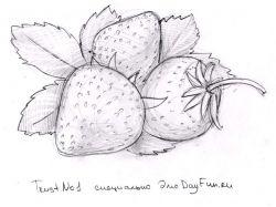 Картинки рисунки цветы карандашом
