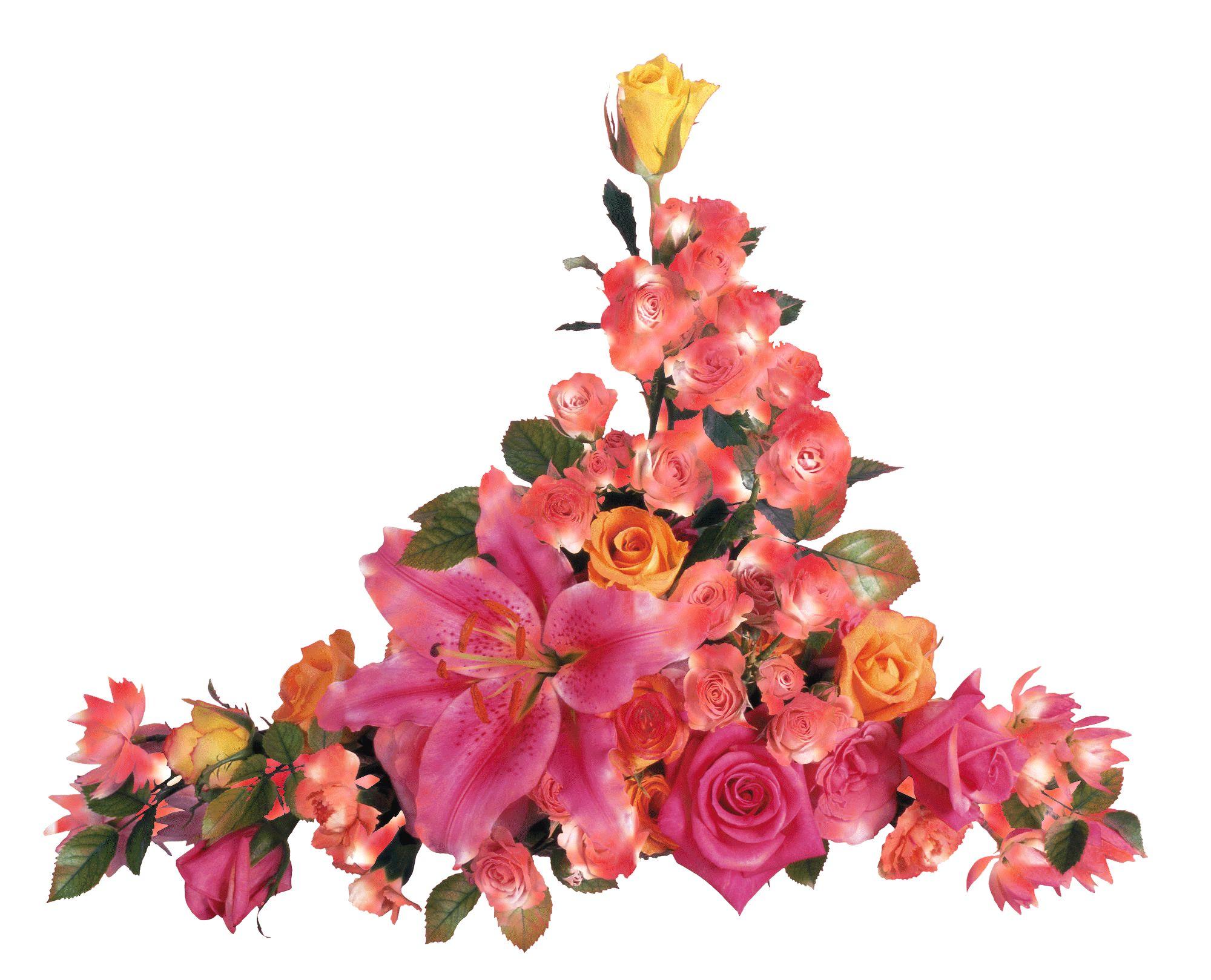 картинка красивые цветы живые картинки на прозрачном фоне бульдог пятизарядный