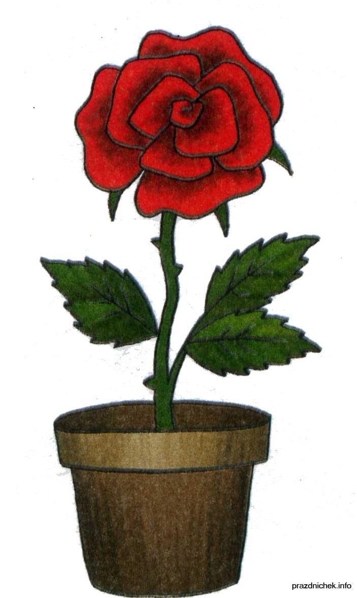 картинка цветочка в горшке