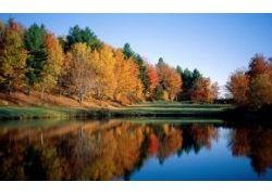 Природа река фото