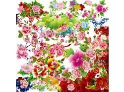 Картинки бабочки и цветы