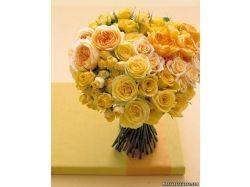 Фото дарить цветы