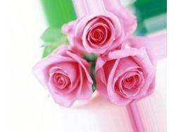 Самые красивые букеты цветов картинки