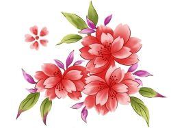 Картинки цветы рисованные