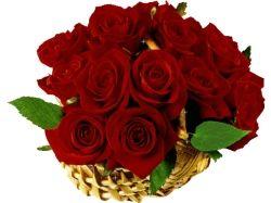 Красивые цветы для любимой картинки