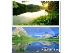 Мир природы картинки
