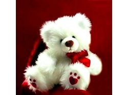 Медвежонок с цветами картинки