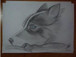 Красивые рисунки карандашом про любовь