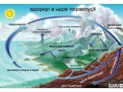 Круговорот воды в природе картинки