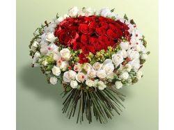 Фото красивых цветов букетов
