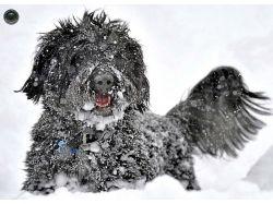 Фото красота зимы