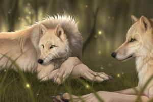 Картинки волков красивые вк