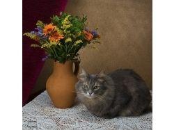 Картинки котят и щенят