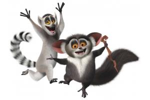 Мадагаскар мультфильм картинки