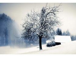 Зима картинки на рабочий стол