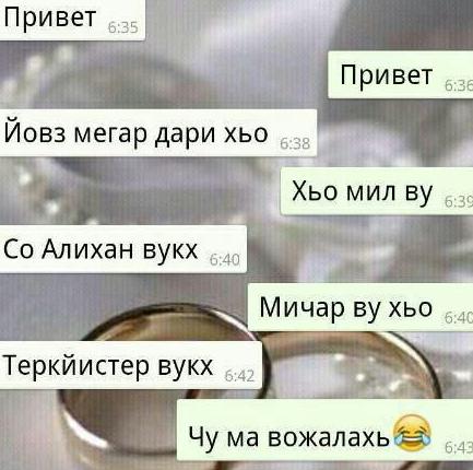 Чеченские смешные картинки с надписью