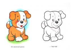 Домашние животные картинки для детей
